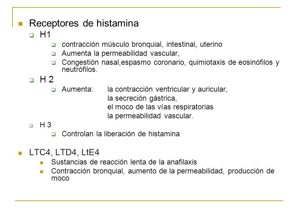 Receptores de histamina H1 contracción músculo bronquial, intestinal, uterino Aumenta la permeabilidad vascular, Congestión nasal,espasmo coronario, q