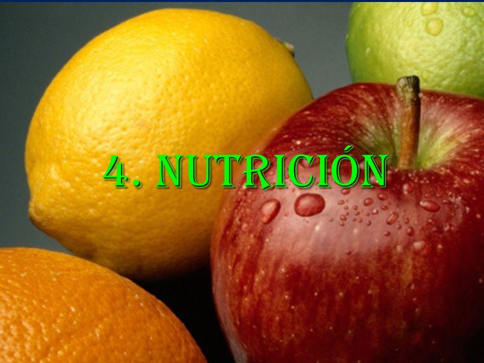 Resumen Nutrición y Diabetes Énfasis en que el plan es un estilo de vida y no una dieta a corto plazo Los principales nutrientes a controlar son los carbohidratos y las frutas El concepto fundamental es control de cantidadEl concepto fundamental es control de cantidad Una nutrición adecuada es parte fundamental del tratamiento de la diabetes