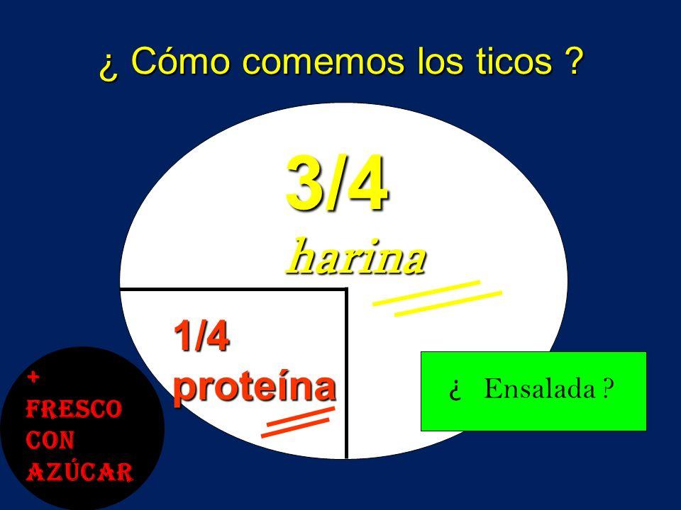 Distribución Apropiada del Plato 1/2 vegetales 1/4 1/4Harina 1/4 proteína