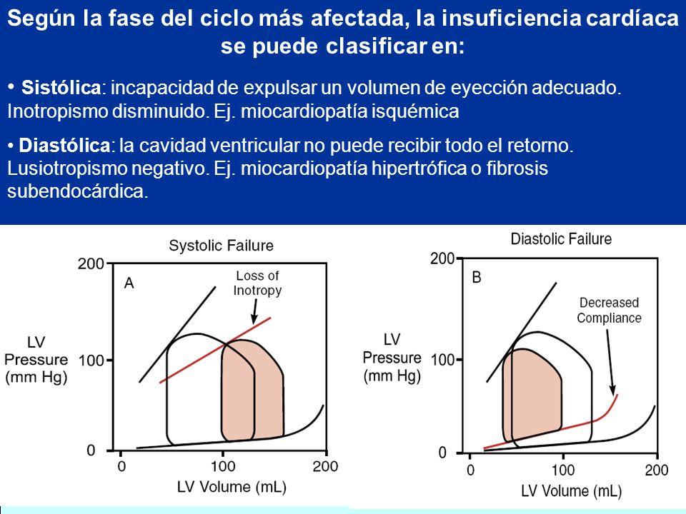 Según la fase del ciclo más afectada, la insuficiencia cardíaca se puede clasificar en: Sistólica: incapacidad de expulsar un volumen de eyección adec