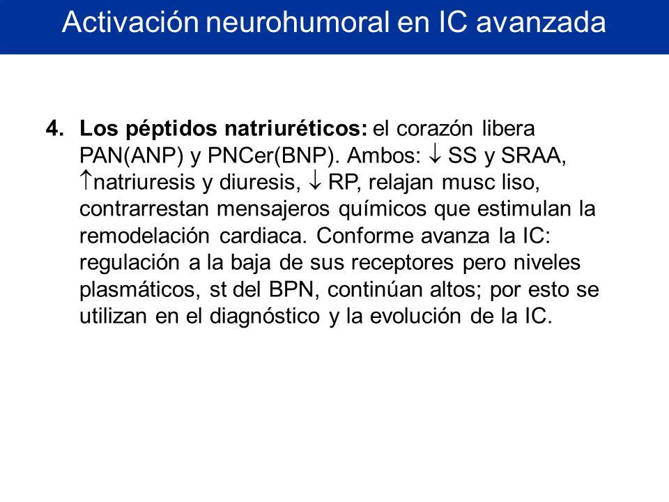 Activación neurohumoral en IC avanzada 4.Los péptidos natriuréticos: el corazón libera PAN(ANP) y PNCer(BNP). Ambos: SS y SRAA, natriuresis y diuresis