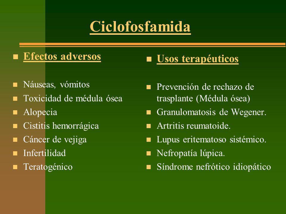 Ciclofosfamida n Efectos adversos n Náuseas, vómitos n Toxicidad de médula ósea n Alopecia n Cistitis hemorrágica n Cáncer de vejiga n Infertilidad n