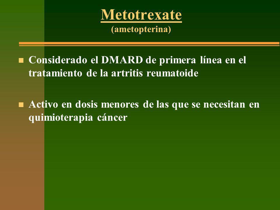 Metotrexate (ametopterina) n Considerado el DMARD de primera línea en el tratamiento de la artritis reumatoide n Activo en dosis menores de las que se