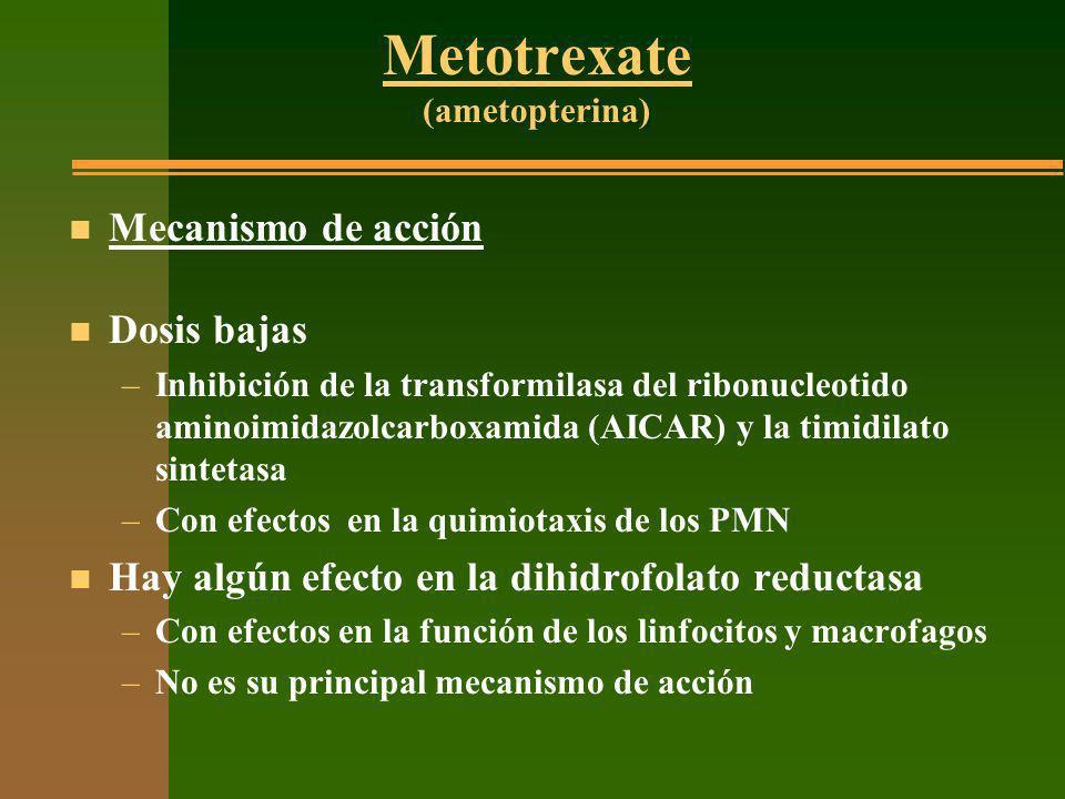 Metotrexate (ametopterina) n Mecanismo de acción n Dosis bajas –Inhibición de la transformilasa del ribonucleotido aminoimidazolcarboxamida (AICAR) y