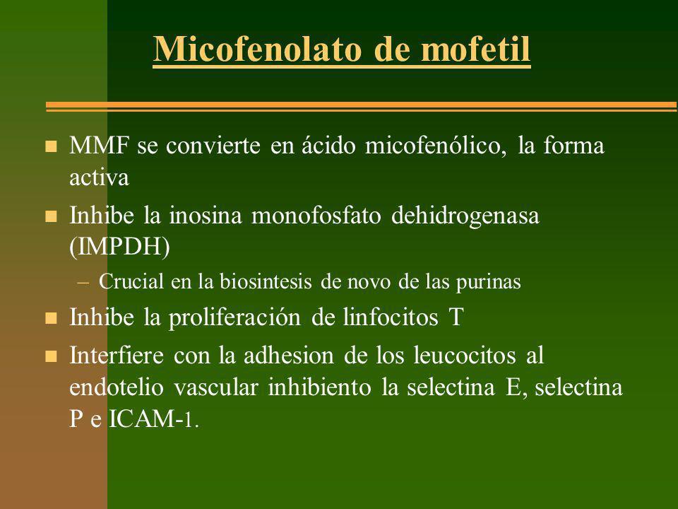 Micofenolato de mofetil n MMF se convierte en ácido micofenólico, la forma activa n Inhibe la inosina monofosfato dehidrogenasa (IMPDH) –Crucial en la