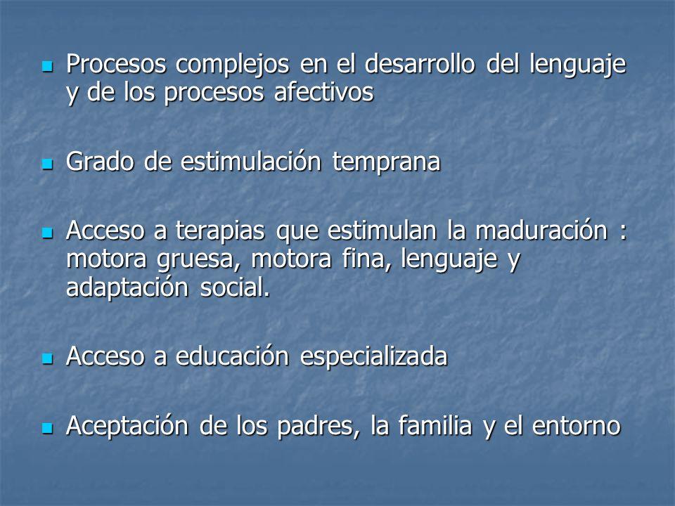 Procesos complejos en el desarrollo del lenguaje y de los procesos afectivos Procesos complejos en el desarrollo del lenguaje y de los procesos afecti