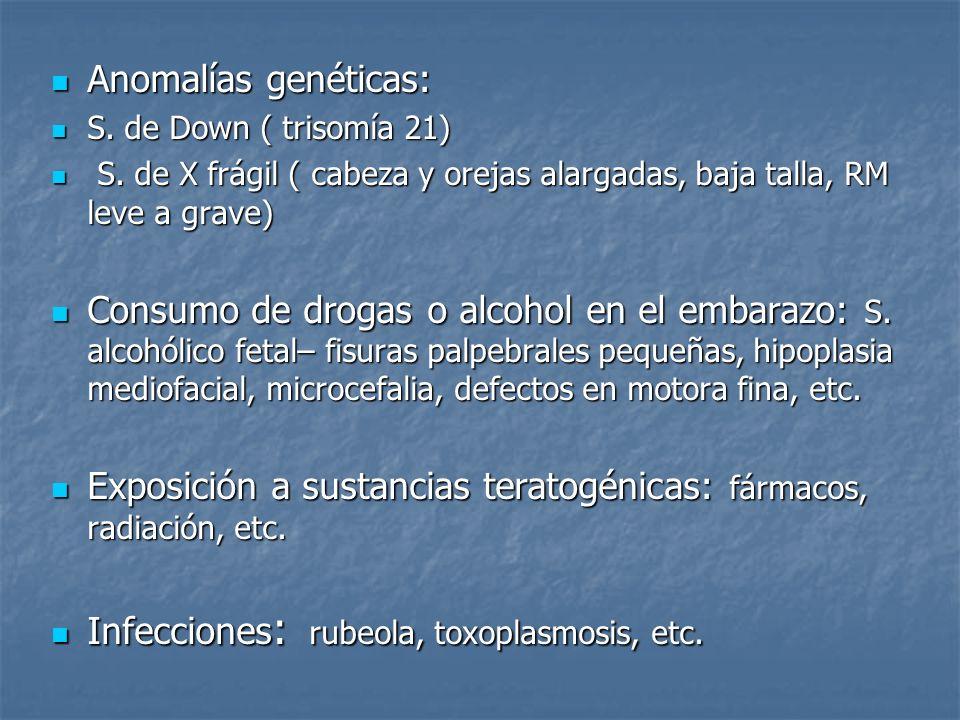 Anomalías genéticas: Anomalías genéticas: S. de Down ( trisomía 21) S. de Down ( trisomía 21) S. de X frágil ( cabeza y orejas alargadas, baja talla,