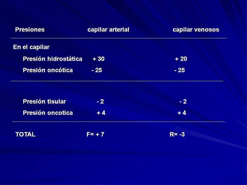 EDEMA Fluido en el TCS y en el intersticio de los tejidos y órganos que excede el volumen normal del líquido intersticial procedente del compartimento