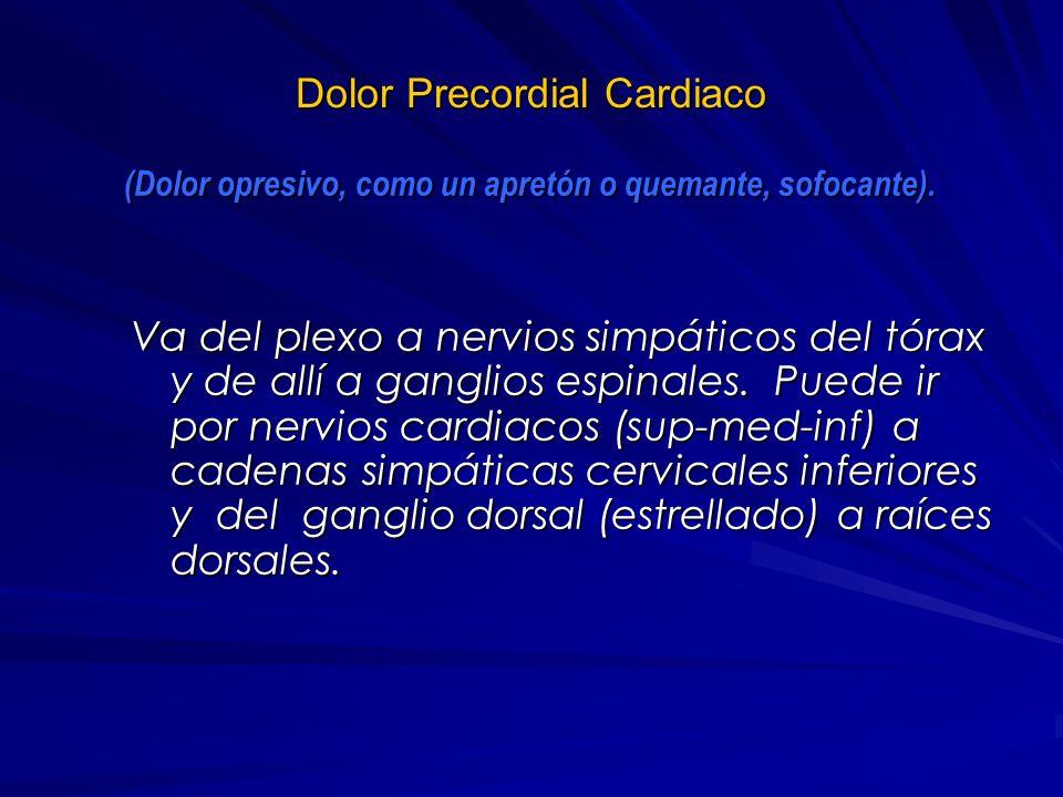 Dolor visceral (central torácico) Origen: Esófago, miocardio, pericardio, tráquea, bronquios, aorta, arterias pulmonares. Ayuda en el diagnóstico: – A