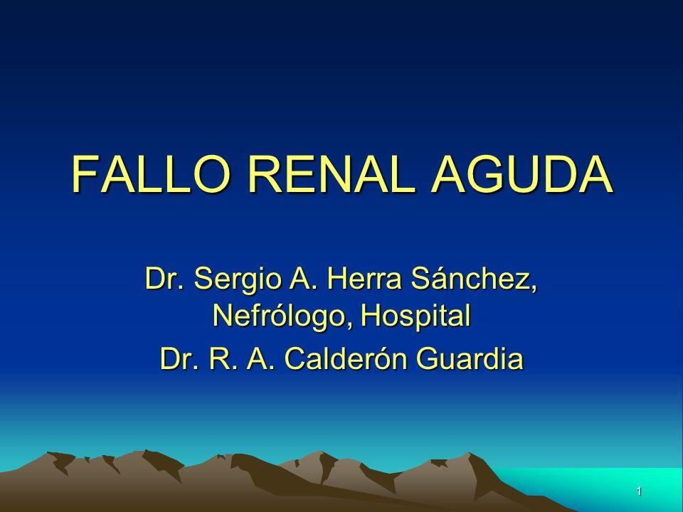1 FALLO RENAL AGUDA Dr. Sergio A. Herra Sánchez, Nefrólogo, Hospital Dr. R. A. Calderón Guardia