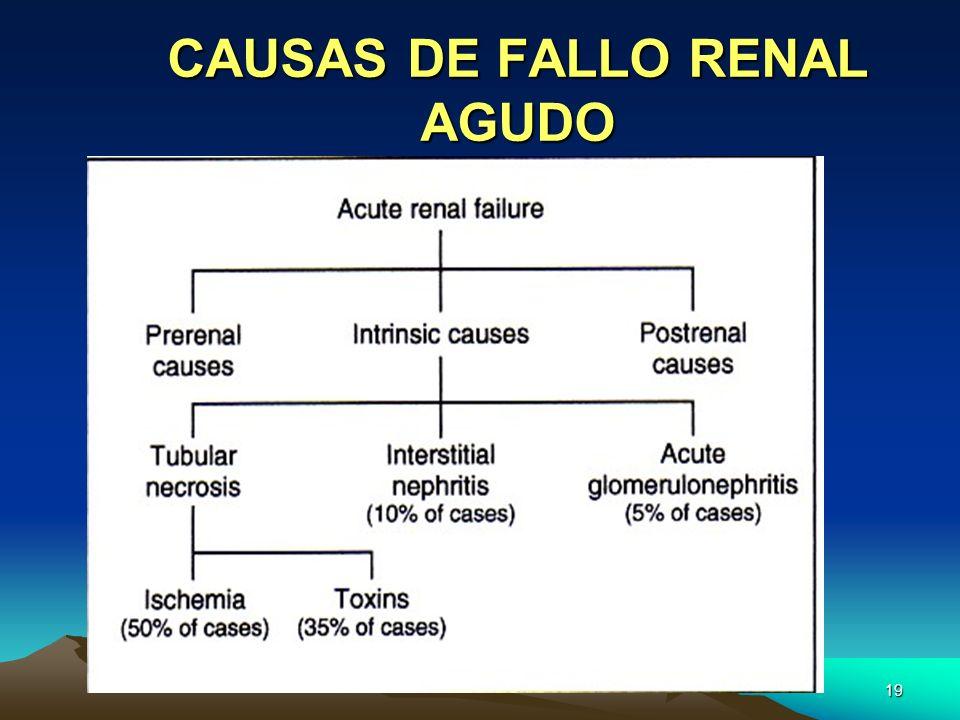 19 CAUSAS DE FALLO RENAL AGUDO