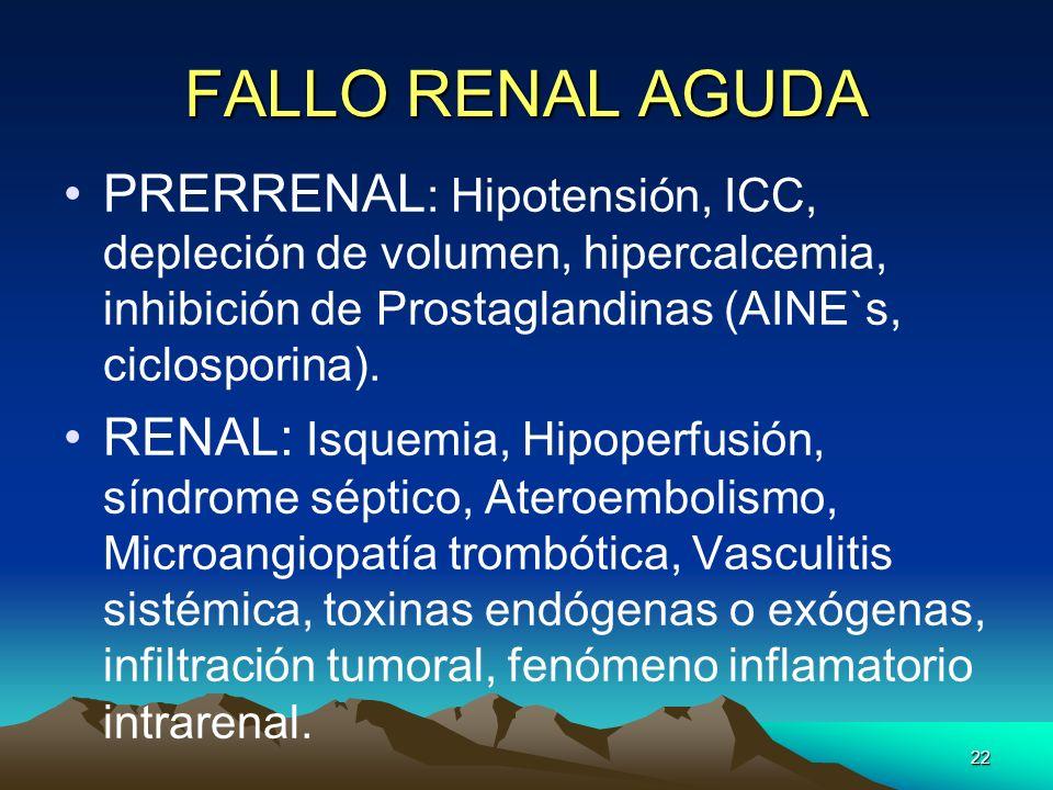 22 FALLO RENAL AGUDA PRERRENAL : Hipotensión, ICC, depleción de volumen, hipercalcemia, inhibición de Prostaglandinas (AINE`s, ciclosporina). RENAL: I