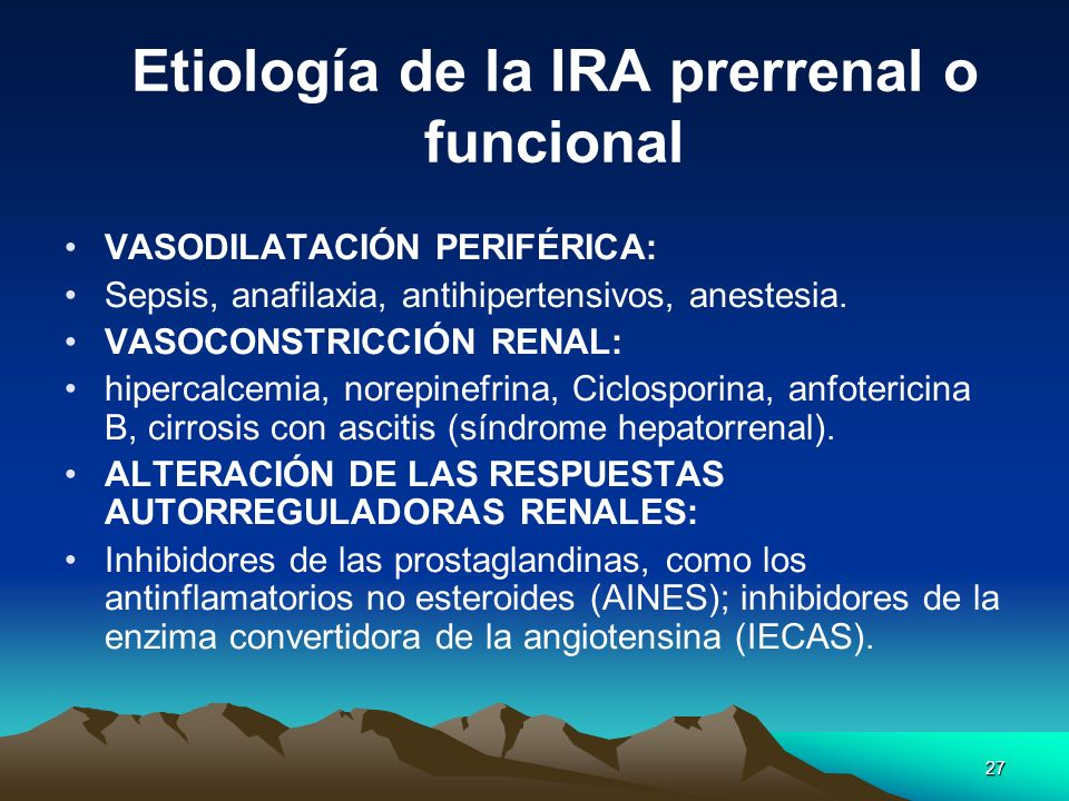 27 Etiología de la IRA prerrenal o funcional VASODILATACIÓN PERIFÉRICA: Sepsis, anafilaxia, antihipertensivos, anestesia. VASOCONSTRICCIÓN RENAL: hipe