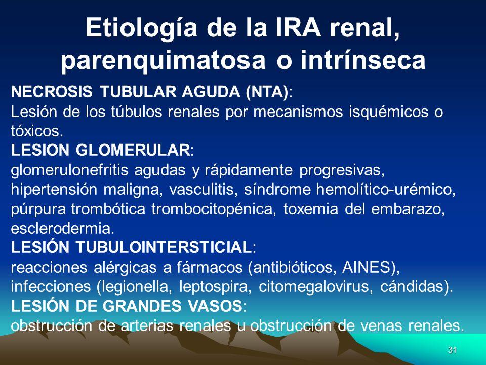 31 NECROSIS TUBULAR AGUDA (NTA): Lesión de los túbulos renales por mecanismos isquémicos o tóxicos. LESION GLOMERULAR: glomerulonefritis agudas y rápi