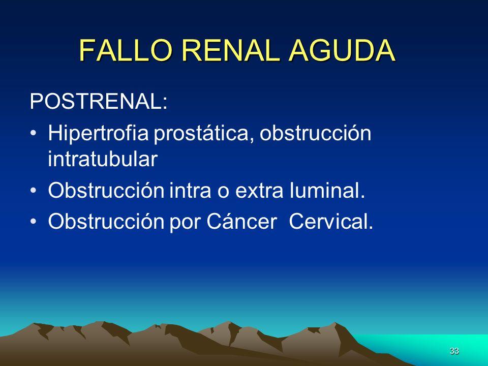 33 FALLO RENAL AGUDA POSTRENAL: Hipertrofia prostática, obstrucción intratubular Obstrucción intra o extra luminal. Obstrucción por Cáncer Cervical.