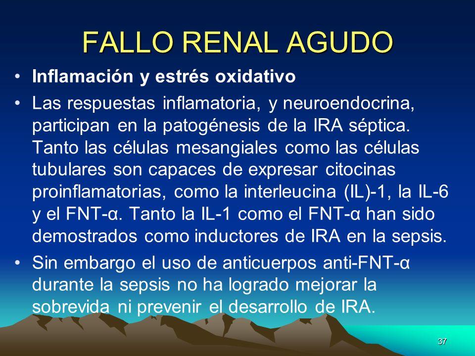 37 FALLO RENAL AGUDO Inflamación y estrés oxidativo Las respuestas inflamatoria, y neuroendocrina, participan en la patogénesis de la IRA séptica. Tan