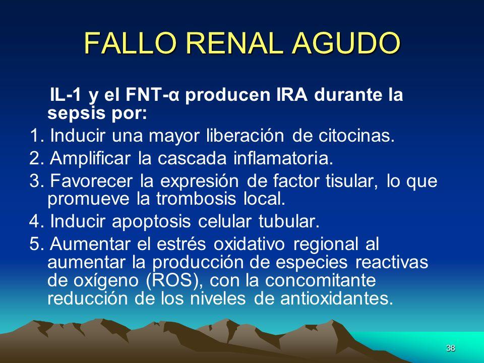 38 FALLO RENAL AGUDO IL-1 y el FNT-α producen IRA durante la sepsis por: 1. Inducir una mayor liberación de citocinas. 2. Amplificar la cascada inflam