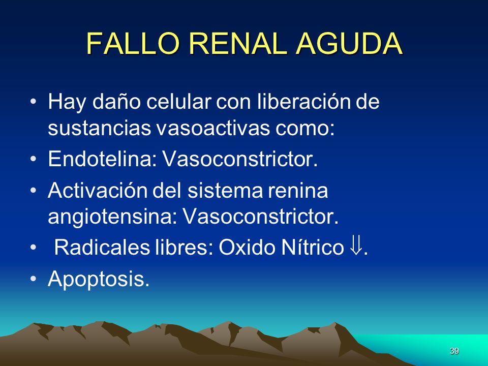39 FALLO RENAL AGUDA Hay daño celular con liberación de sustancias vasoactivas como: Endotelina: Vasoconstrictor. Activación del sistema renina angiot