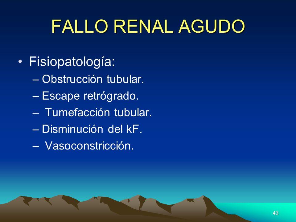 43 FALLO RENAL AGUDO Fisiopatología: –Obstrucción tubular. –Escape retrógrado. – Tumefacción tubular. –Disminución del kF. – Vasoconstricción.