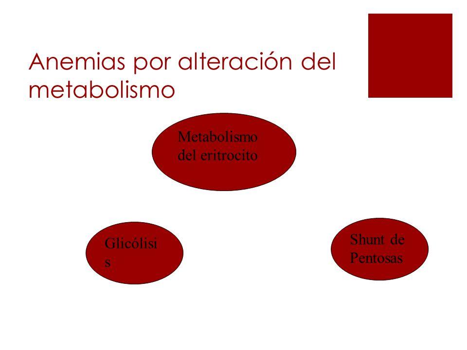 Anemias por alteración del metabolismo Metabolismo del eritrocito Glicólisi s Shunt de Pentosas