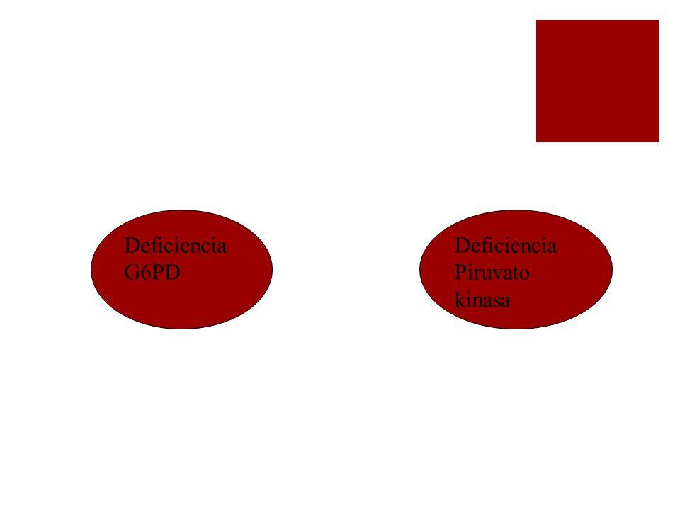 Deficiencia G6PD Deficiencia Piruvato kinasa