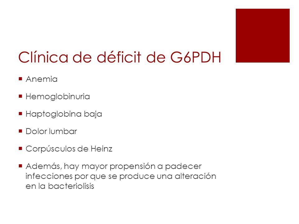 Clínica de déficit de G6PDH Anemia Hemoglobinuria Haptoglobina baja Dolor lumbar Corpúsculos de Heinz Además, hay mayor propensión a padecer infeccion