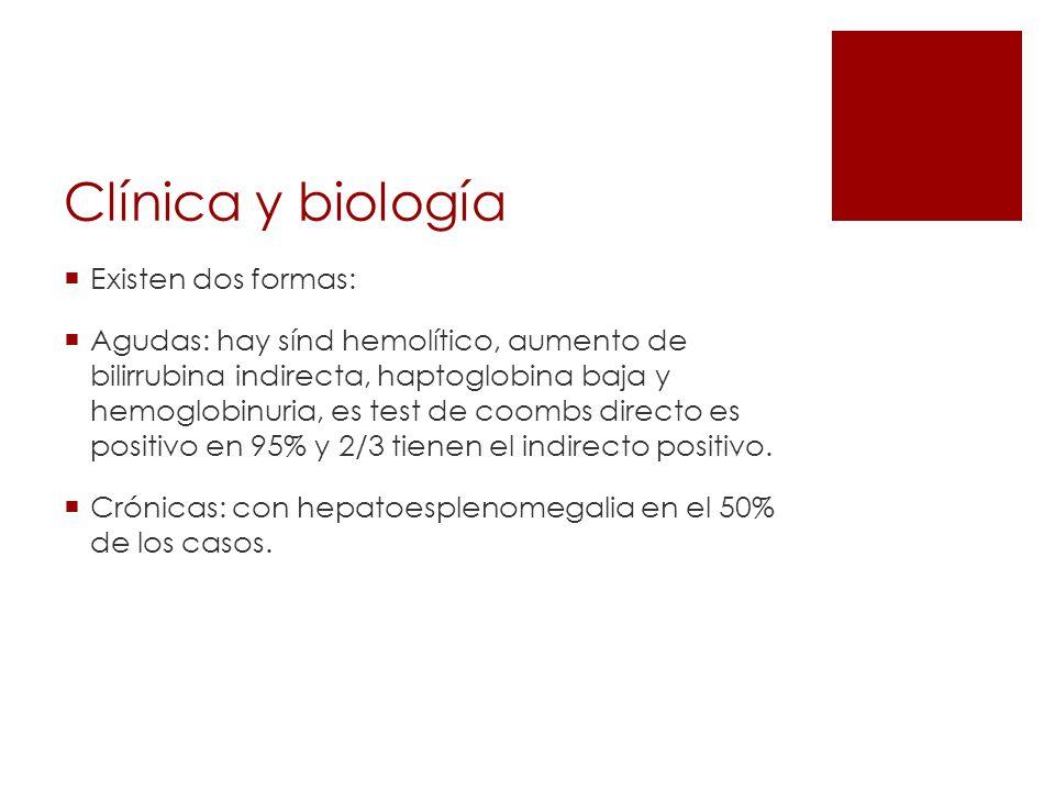 Clínica y biología Existen dos formas: Agudas: hay sínd hemolítico, aumento de bilirrubina indirecta, haptoglobina baja y hemoglobinuria, es test de c