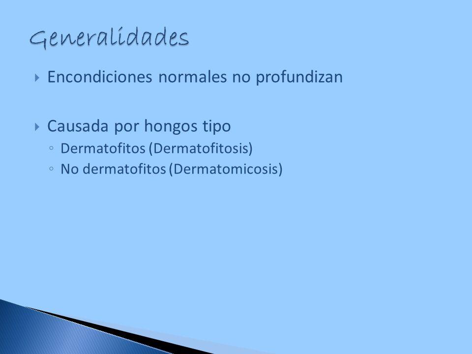 Encondiciones normales no profundizan Causada por hongos tipo Dermatofitos (Dermatofitosis) No dermatofitos (Dermatomicosis)