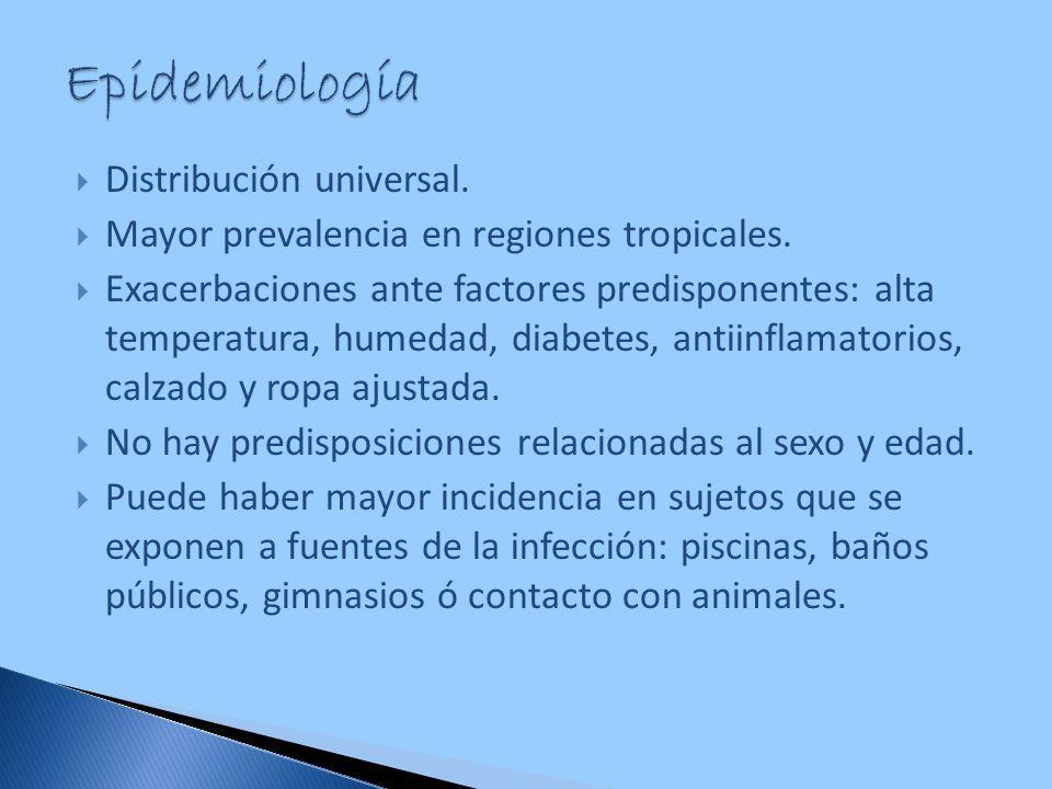 Distribución universal. Mayor prevalencia en regiones tropicales. Exacerbaciones ante factores predisponentes: alta temperatura, humedad, diabetes, an