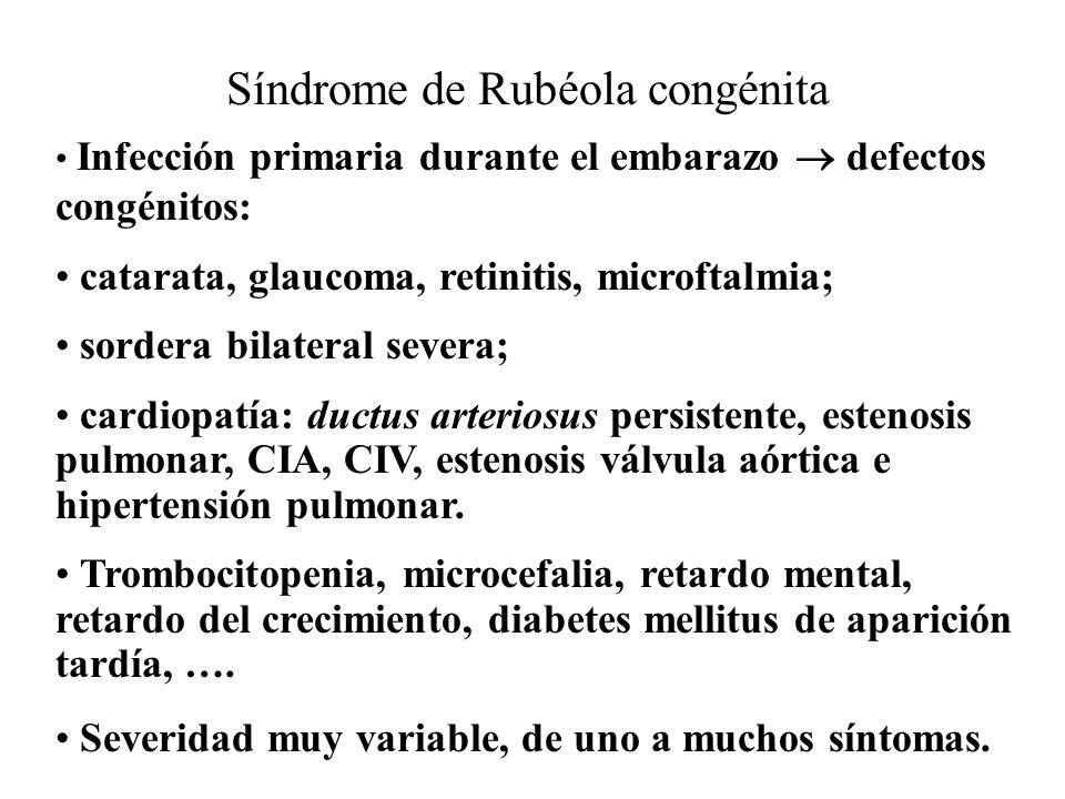Incidencia del síndrome de rubeóla congénita Estadio de la infección Incidencia primer mes de gesta> 50 % segundo mes ~ 35 % tercer mes~ 18 % cuarto mes~ 8 % tercer trimestre ~ 0 %