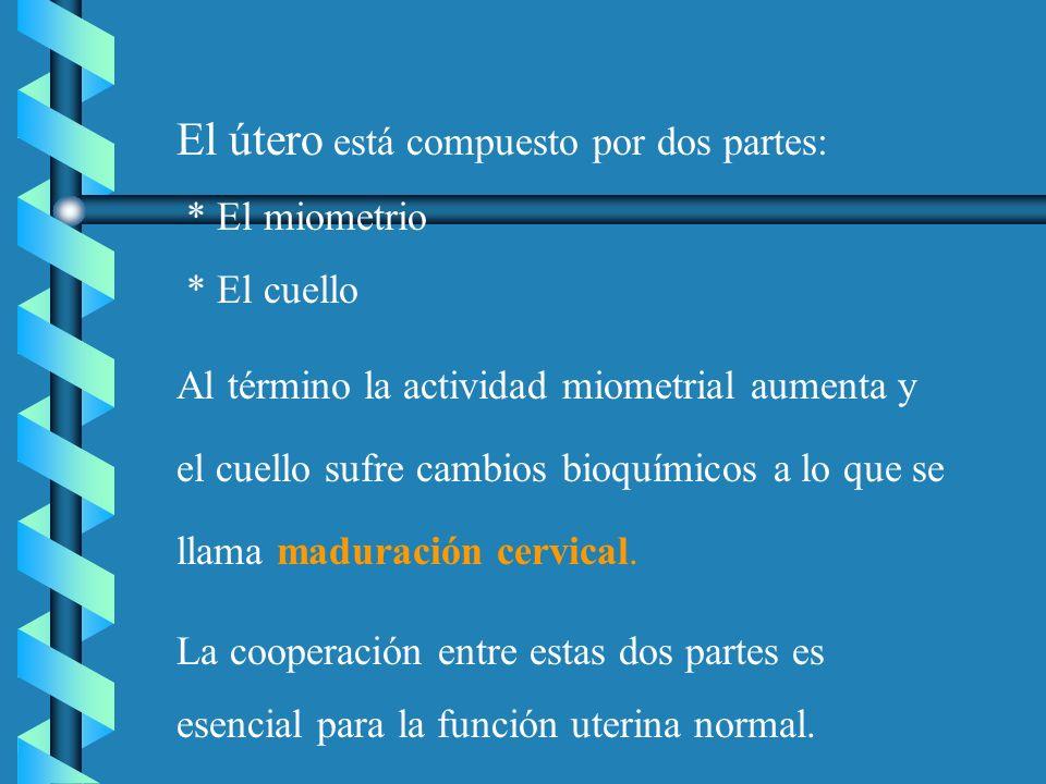 El útero está compuesto por dos partes: * El miometrio * El cuello Al término la actividad miometrial aumenta y el cuello sufre cambios bioquímicos a