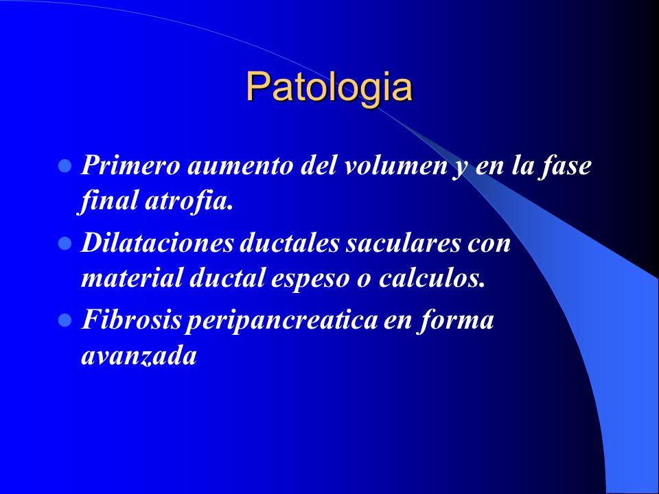 Patologia Primero aumento del volumen y en la fase final atrofia. Dilataciones ductales saculares con material ductal espeso o calculos. Fibrosis peri