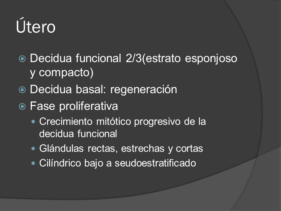 Útero Decidua funcional 2/3(estrato esponjoso y compacto) Decidua basal: regeneración Fase proliferativa Crecimiento mitótico progresivo de la decidua