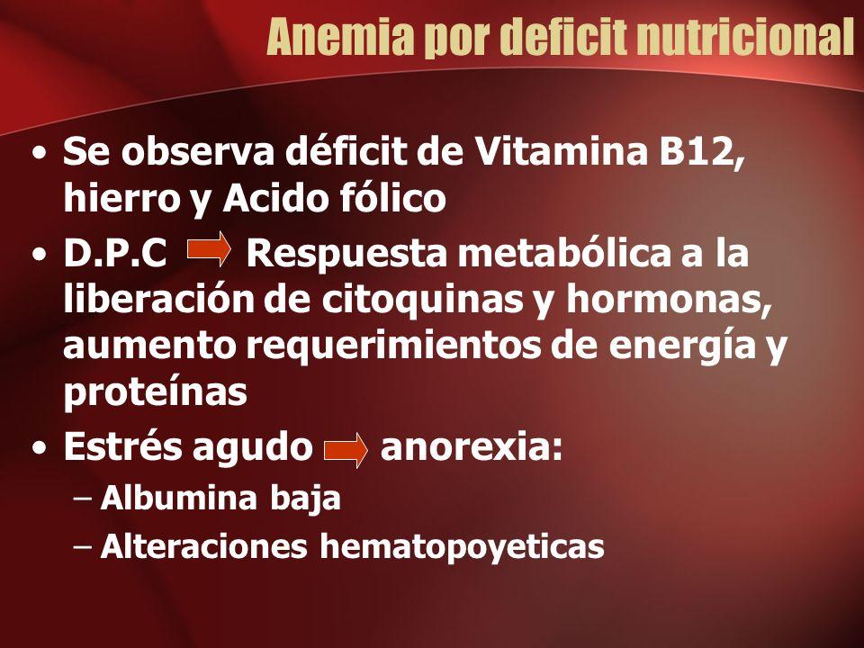 Anemia por deficit nutricional Se observa déficit de Vitamina B12, hierro y Acido fólico D.P.C Respuesta metabólica a la liberación de citoquinas y hormonas, aumento requerimientos de energía y proteínas Estrés agudo anorexia: –Albumina baja –Alteraciones hematopoyeticas