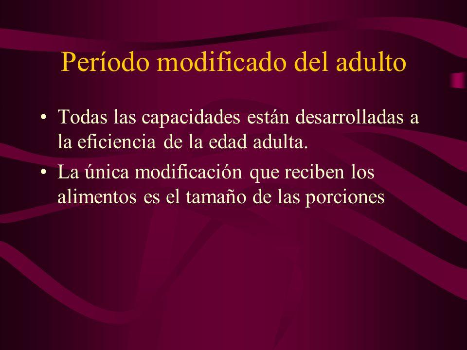 Período modificado del adulto Todas las capacidades están desarrolladas a la eficiencia de la edad adulta. La única modificación que reciben los alime