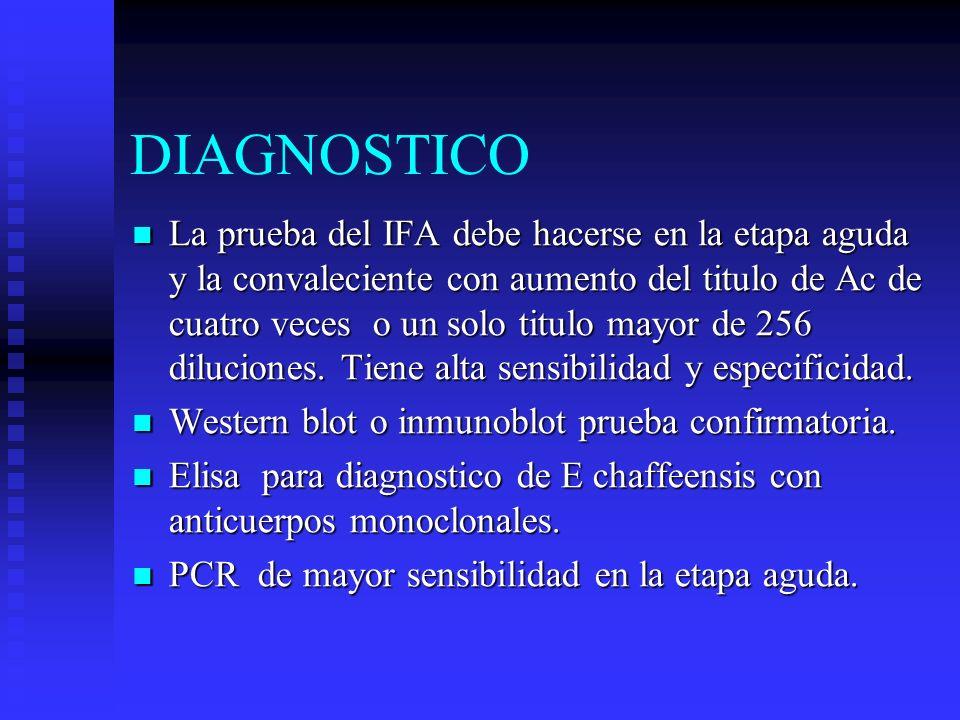 DIAGNOSTICO La prueba del IFA debe hacerse en la etapa aguda y la convaleciente con aumento del titulo de Ac de cuatro veces o un solo titulo mayor de