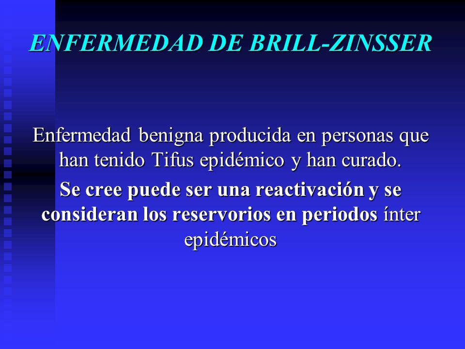 ENFERMEDAD DE BRILL-ZINSSER Enfermedad benigna producida en personas que han tenido Tifus epidémico y han curado. Se cree puede ser una reactivación y