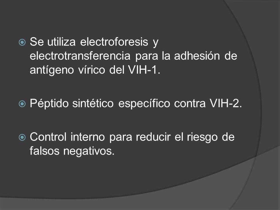 Se utiliza electroforesis y electrotransferencia para la adhesión de antígeno vírico del VIH-1. Péptido sintético específico contra VIH-2. Control int