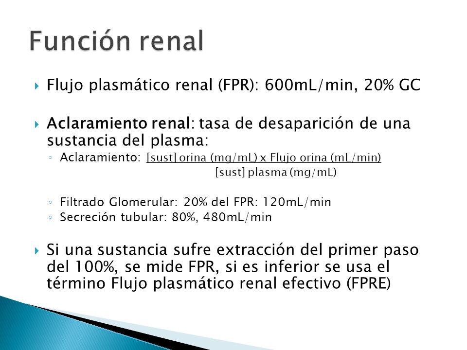 Flujo plasmático renal (FPR): 600mL/min, 20% GC Aclaramiento renal: tasa de desaparición de una sustancia del plasma: Aclaramiento: [sust] orina (mg/mL) x Flujo orina (mL/min) [sust] plasma (mg/mL) Filtrado Glomerular: 20% del FPR: 120mL/min Secreción tubular: 80%, 480mL/min Si una sustancia sufre extracción del primer paso del 100%, se mide FPR, si es inferior se usa el término Flujo plasmático renal efectivo (FPRE)