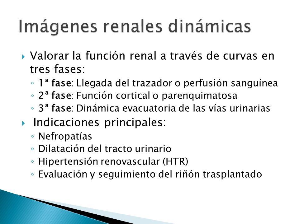 Valorar la función renal a través de curvas en tres fases: 1ª fase: Llegada del trazador o perfusión sanguínea 2ª fase: Función cortical o parenquimatosa 3ª fase: Dinámica evacuatoria de las vías urinarias Indicaciones principales: Nefropatías Dilatación del tracto urinario Hipertensión renovascular (HTR) Evaluación y seguimiento del riñón trasplantado