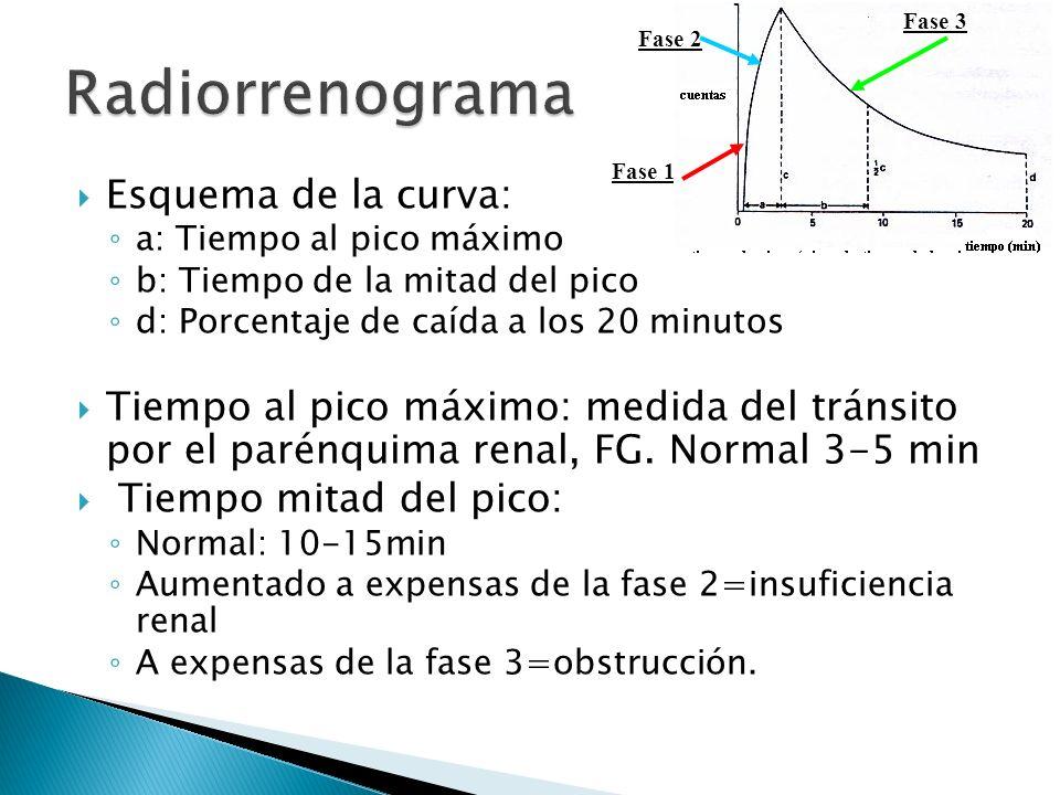 Esquema de la curva: a: Tiempo al pico máximo b: Tiempo de la mitad del pico d: Porcentaje de caída a los 20 minutos Tiempo al pico máximo: medida del tránsito por el parénquima renal, FG.