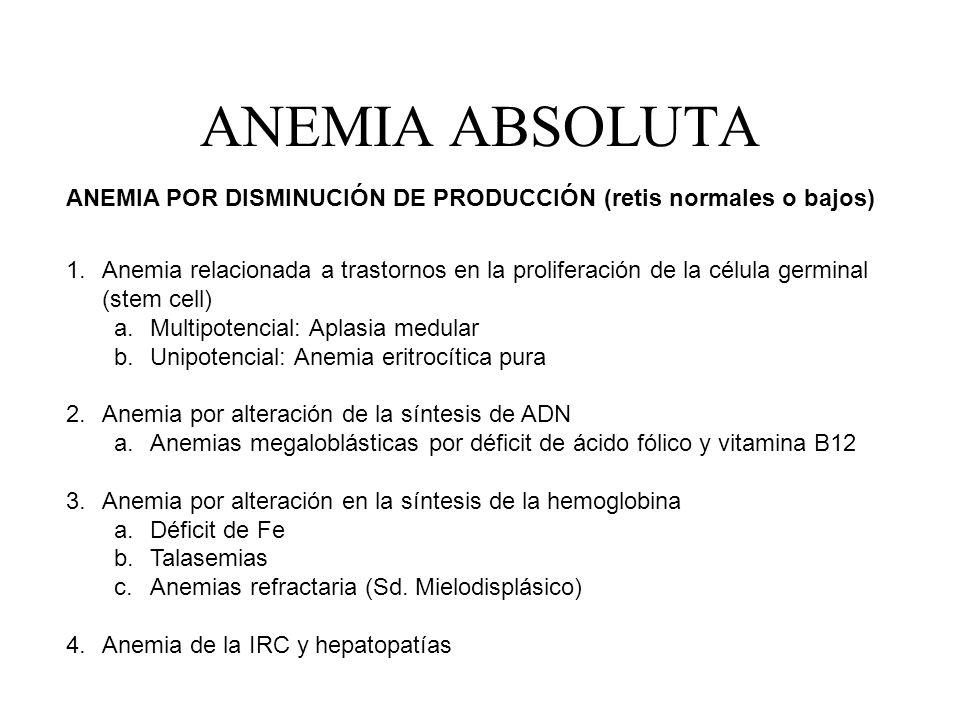 ANEMIA ABSOLUTA ANEMIA POR DISMINUCIÓN DE PRODUCCIÓN (retis normales o bajos) 1.Anemia relacionada a trastornos en la proliferación de la célula germi
