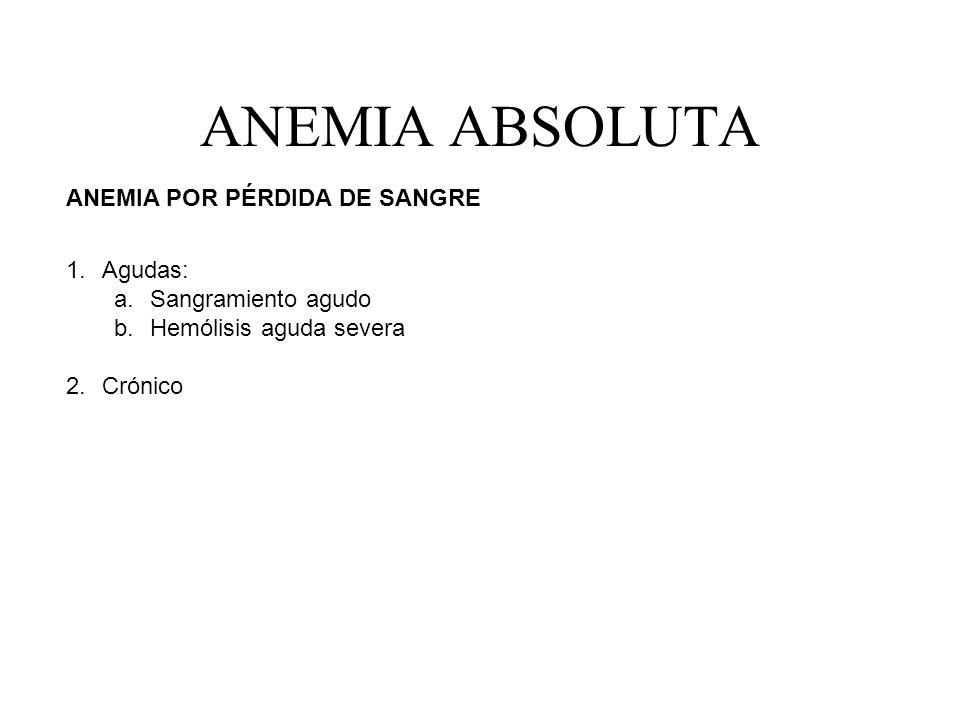 ANEMIA ABSOLUTA ANEMIA POR PÉRDIDA DE SANGRE 1.Agudas: a.Sangramiento agudo b.Hemólisis aguda severa 2.Crónico