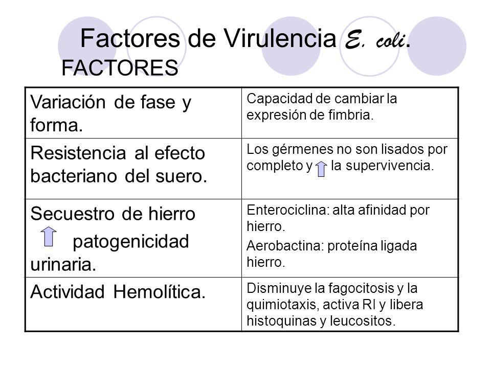 Factores de Virulencia E. coli. Variación de fase y forma. Capacidad de cambiar la expresión de fimbria. Resistencia al efecto bacteriano del suero. L