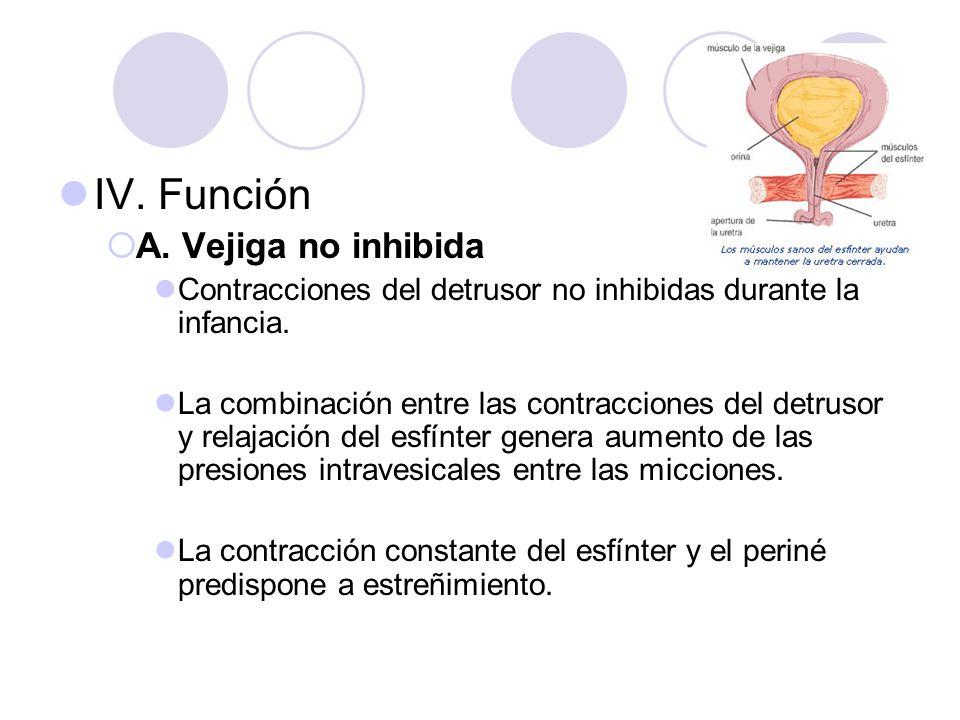 IV. Función A. Vejiga no inhibida Contracciones del detrusor no inhibidas durante la infancia. La combinación entre las contracciones del detrusor y r