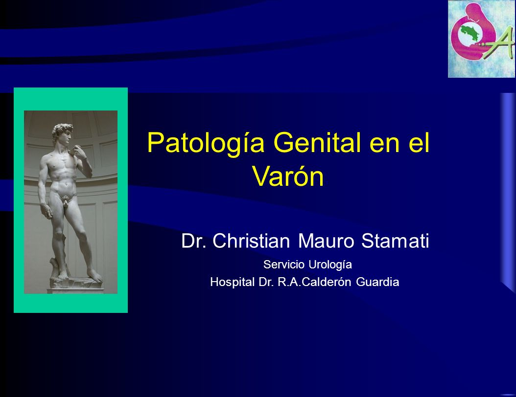 Patología Genital en el Varón Dr. Christian Mauro Stamati Servicio Urología Hospital Dr. R.A.Calderón Guardia