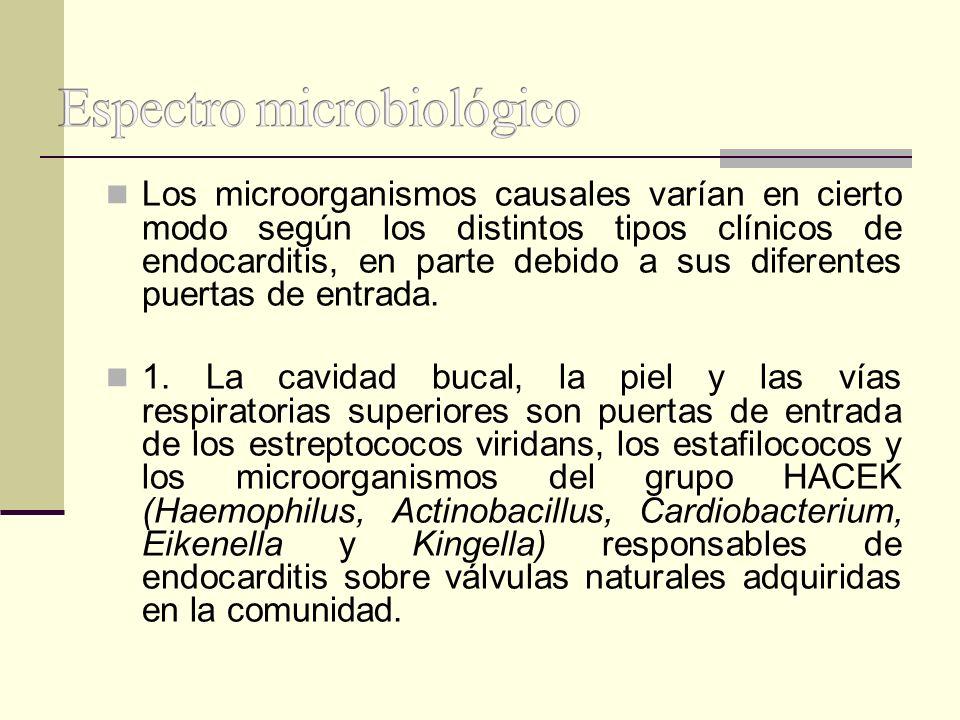 Los microorganismos causales varían en cierto modo según los distintos tipos clínicos de endocarditis, en parte debido a sus diferentes puertas de ent
