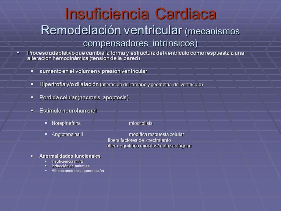 Insuficiencia Cardiaca Remodelación ventricular (mecanismos compensadores intrínsicos) Proceso adaptativo que cambia la forma y estructura del ventríc