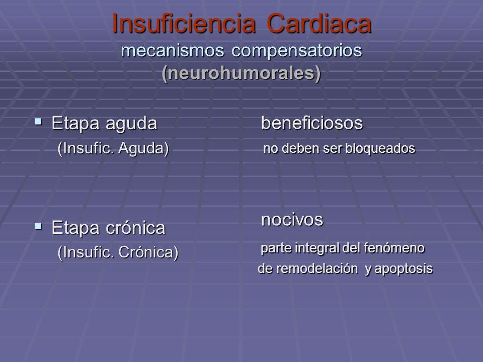 Insuficiencia Cardiaca mecanismos compensatorios (neurohumorales) Etapa aguda Etapa aguda (Insufic. Aguda) Etapa crónica Etapa crónica (Insufic. Cróni