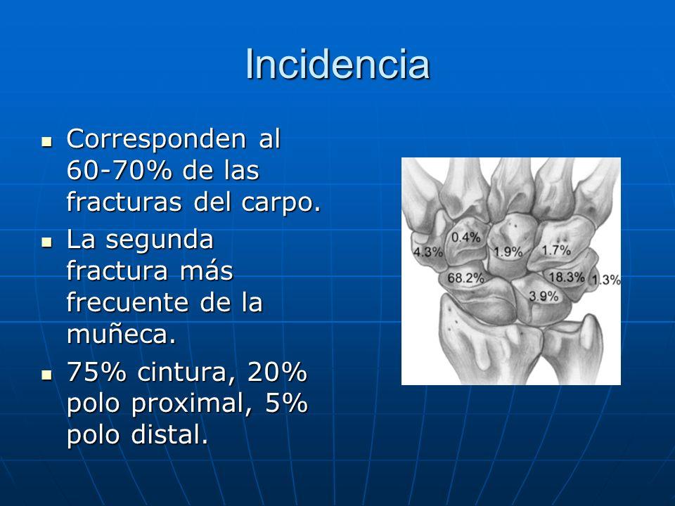 Incidencia Corresponden al 60-70% de las fracturas del carpo. Corresponden al 60-70% de las fracturas del carpo. La segunda fractura más frecuente de
